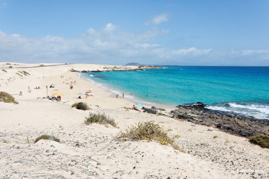 Bien-aimé Les îles Canaries : Ténérife, Grande Canarie, Fuerteventura et  ME07