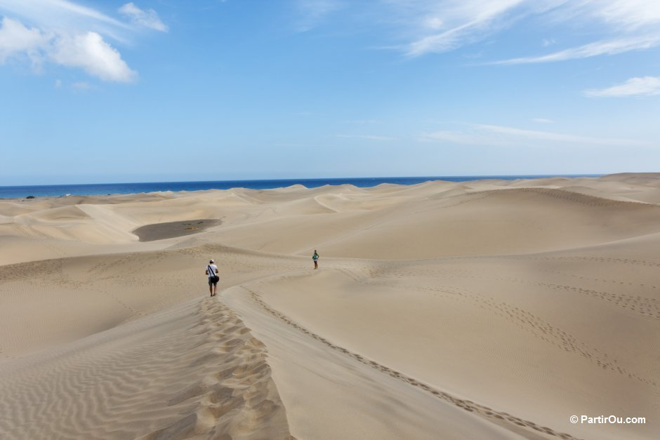 Dunes de maspalomas grande canarie espagne 12 - 1 6