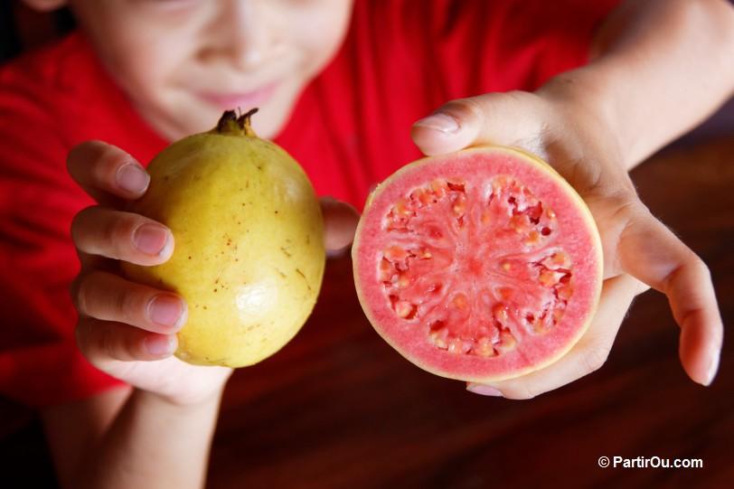 Fruit ou legume en i - Fruit ou legume en i ...