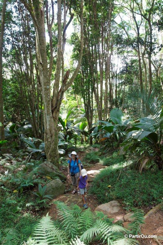Jardin du roi sur l 39 le de mah seychelles en photos for Villa de jardin mahe seychelles